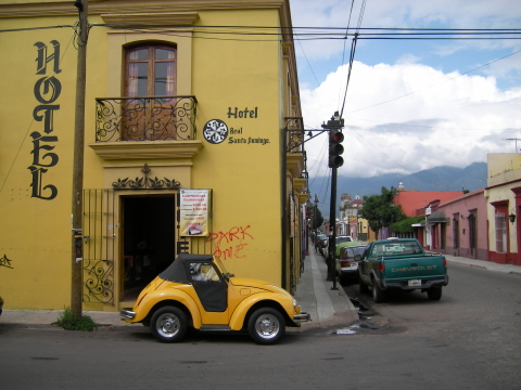 A mexican beetle